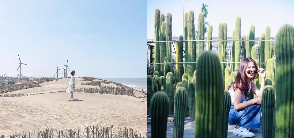 別再說這兩個縣市是景點沙漠!真正的沙漠跟仙人掌都在這,快抓住夏天尾巴來感受一下!