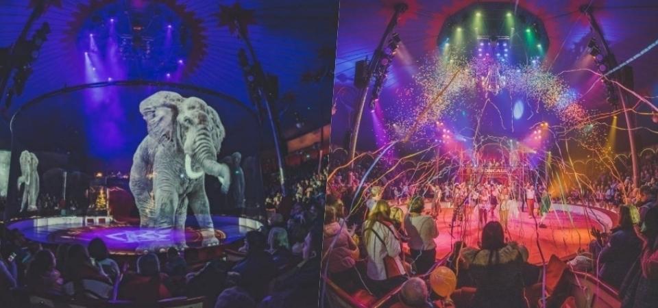 不用再虐待動物!德國 Circus Roncalli 馬戲團以「全息投影」取代真實動物!網友:真的非常精彩