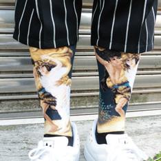 HUMMINGBIRD 的 名畫 暴風雨襪子