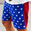 FOREVER 21 的 美國國旗雙色短褲