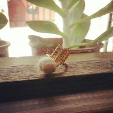 DIY 的 手作兔毛氈黃銅戒